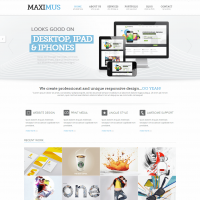 Maximus - Responsive Multi-Purpose Website Templat